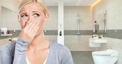 5 cách giữ nhà vệ sinh thông thoáng sạch sẽ ngăn vi khuẩn hình thành