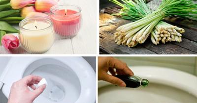 9 phương pháp loại bỏ hoàn toàn mùi hôi nhà vệ sinh hiệu quả ngay từ lần đầu