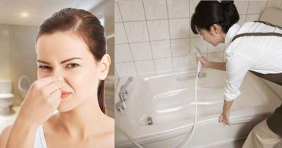 Mách bạn cách xử lý dễ nhất mùi hôi nhà vệ sinh nhanh chóng hiệu quả
